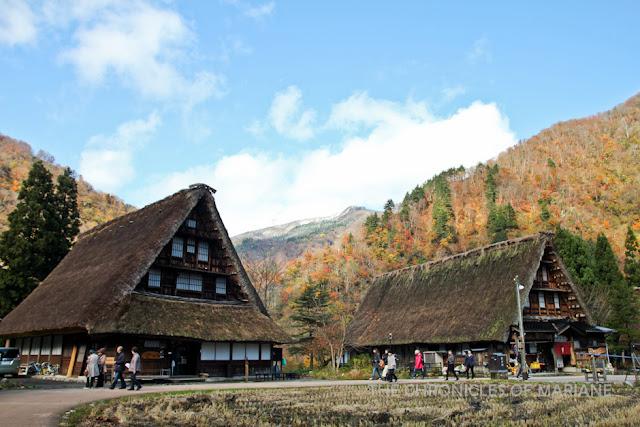 gokayama autumn