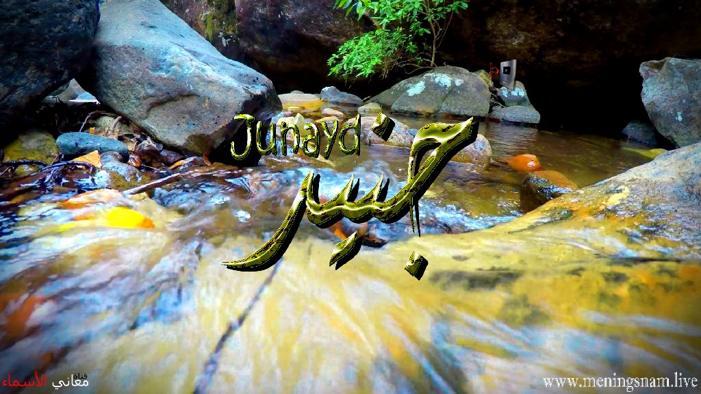 معنى اسم جنيد وصفات حامل هذا الاسم Junayd