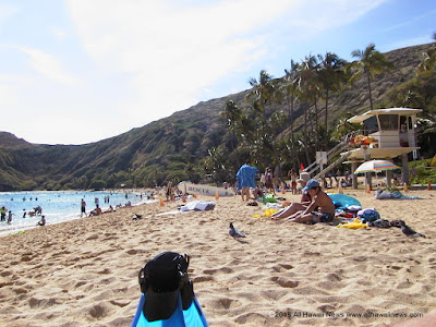 High bacteria closes Hanauma Bay,  gender X  could appear on  state IDs, licenses, attorney general drops charges against Maui corporation counsel, Oahu pedestrian plan hearings set, more news from all the Hawaiian Islands