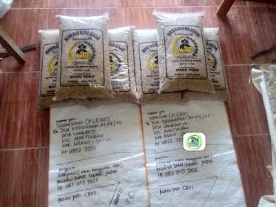 Benih Padi yang dibeli    SUDARSONO Ngawi, Jatim.    (Sebelum packing karung).