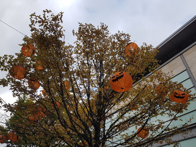 Pretty much every tree in the city centre is full of pumpkins!