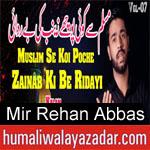 https://humaliwalaazadar.blogspot.com/2019/08/mir-rehan-abbas-nohay-2020.html
