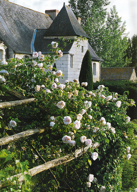 Rambling Roses, Quaint Village, Côté Ouest as seen on linenandlavender.net