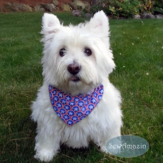 All Star Superhero Patriotic Dog Bandana