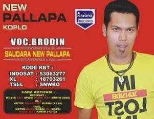 Download Kumpulan Lagu Brodin Mp3 Dangdut New Pallapa Terbaru