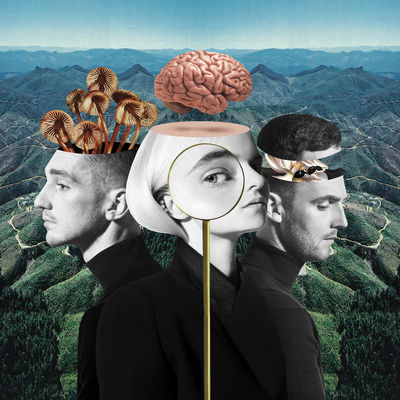 Clean Bandit And What Is Love? Change In The Wrong Way