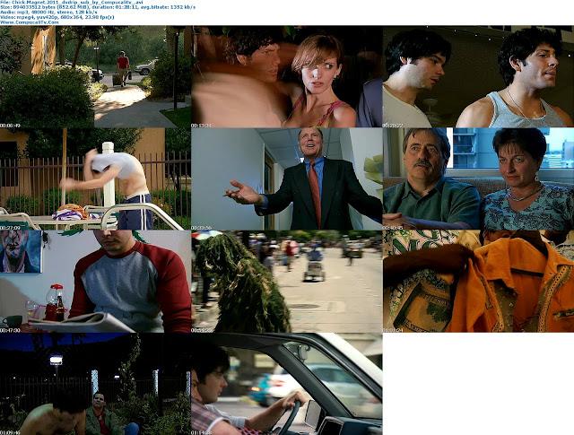 Chick Magnet 2011 DVDRip Latino
