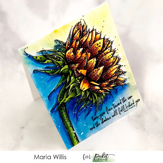 #mariawillis, #cardbomb, #cards, #stamp, #ink, #paper, #papercraft, #craft, #cardmaker, #cardmaking, #art, #diy, #handmade, Picket Fence Studios, Face the Sun, #sunflower, #copicmarkers, #watercolor,