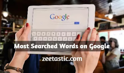 Most Searched Words on Google