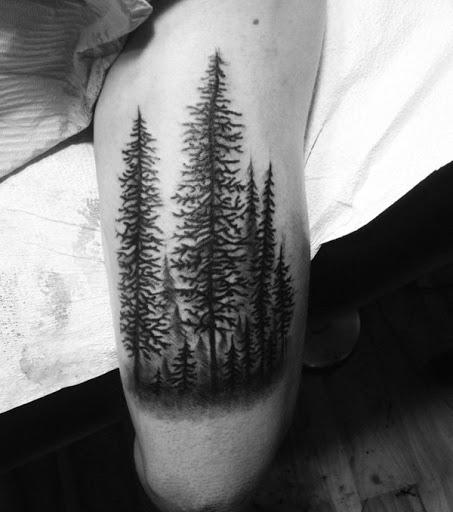 Evergreens continua forte, não importa o que eles tem que ir através de: chuva, neve ou sol. É uma sutil tatuagem mas tem uma mensagem poderosa.