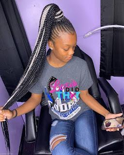 African Braids Hairstyles.