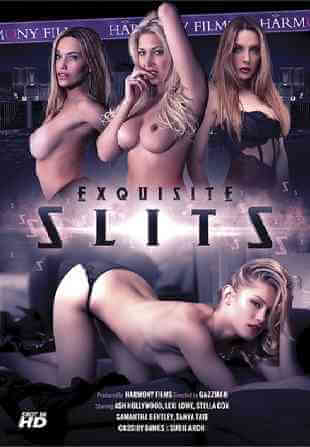 Download [18+] Exquisite Slits (2016) English 480p 467mb