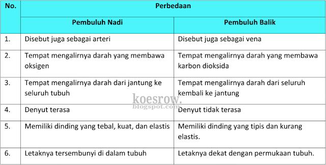 Perbedaan pembuluh nadi dan balik Kelas 5 Tema 4 Halaman 6