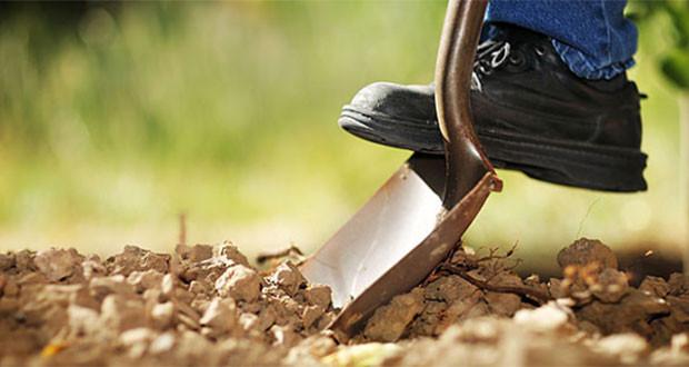 """Πρόγραμμα αγροτικής ενίσχυσης και στην Αργολίδα από την """"ΑΠΟΣΤΟΛΗ"""""""