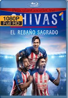 Chivas: El Rebaño Sagrado (2021)[1080p Web-DL] [Latino-Inglés][Google Drive] chapelHD