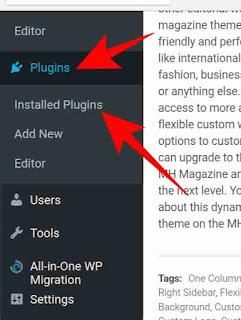 WordPress me plugin or theme delete kese kare 2