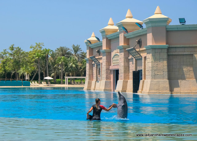 Dolphin Bay in Atlantis The Palm