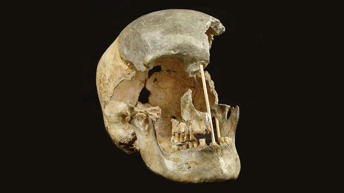 DNA de Homens modernos mais antigo revela ancestralidade neandertal