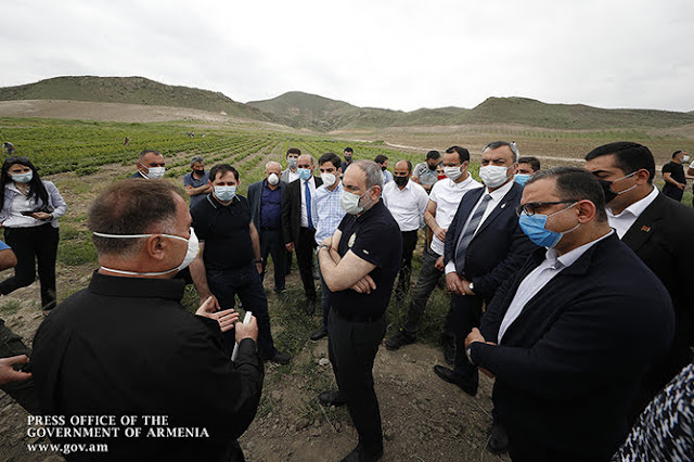 Armenia promueve viñedos de cepas nativas