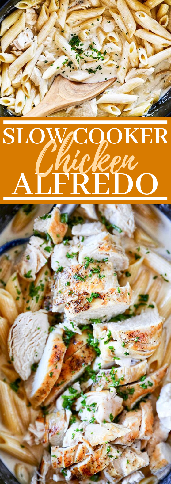 Slow Cooker Chicken Alfredo #dinner #pasta