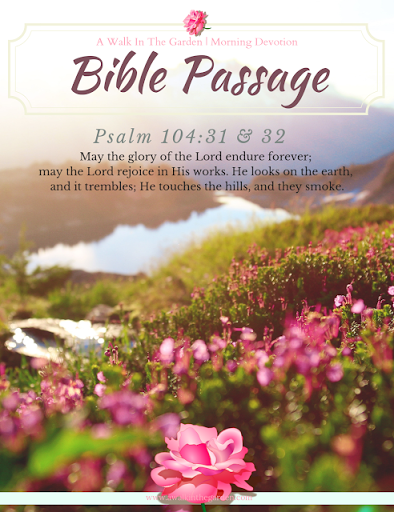 Morning Devotion: Bless The Sovereign Lord of Creation
