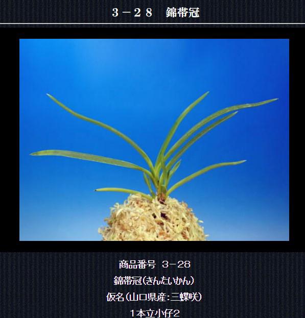 http://www.fuuran.jp/3-28html