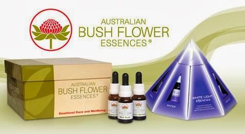 """set de esencias florales australianas mostrando logotipo de las flores de bush, además de envase en forma de pirámide color azul-violeta con franjas verticales blancas y una caja con tapa con nombre """"australian Bush Flowers Essences"""""""
