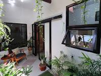 Taman Minimalis Depan Rumah Inspirasi Lahan Sempit