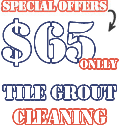 http://www.tilegroutcleaningstafford.com/steam-cleaners/special-offers.jpg