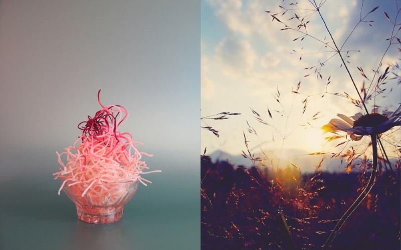 Sélection de photographies sur Pinterest