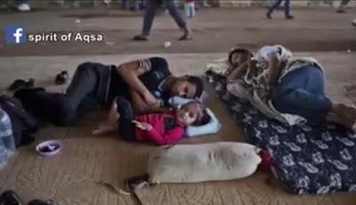 Video Anak-Anak Gaza Rela Tidur di Lantai agar Pengungsi Suriah Tidur di Kasur Mereka