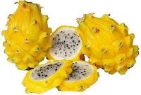 Buah Naga Kuning