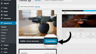 Customize your WordPress theme, Start a blog (beginner to advance guide), blogging, beginner guide to start a blog
