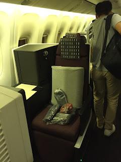 17レグ JL38 シンガポール-東京・羽田 ビジネスクラス | 搭乗記録 | マイル修行:JAL・JGCの旅2016