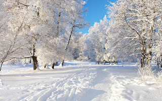 Berbagai Jenis Musim (Season) Dalam Bahasa Inggris