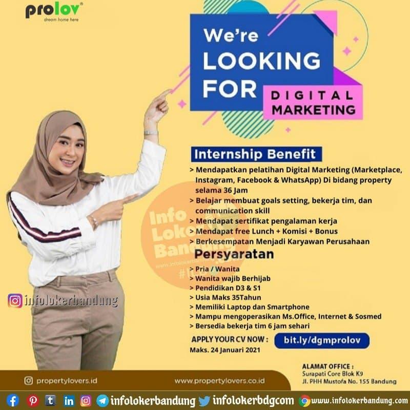 Lowongan Kerja Digital Marketing Prolov Bandung Januari 2021