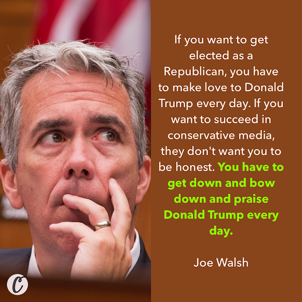 If you want to get elected as a Republican, you have to make love to Donald Trump every day. If you want to succeed in conservative media, they don't want you to be honest. You have to get down and bow down and praise Donald Trump every day. — Former Illinois GOP Congressman Joe Walsh