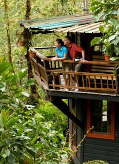 Turismo sostenible y turismo verde