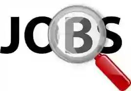 JOB POST: Financial Crime Analyst at BlackRock [Invest Management Corporation], Mumbai: Apply Now!