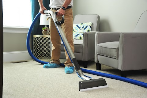 Top 5 Professional Carpet Cleaning Tips