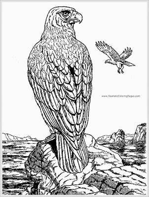 eagle adult coloring pages
