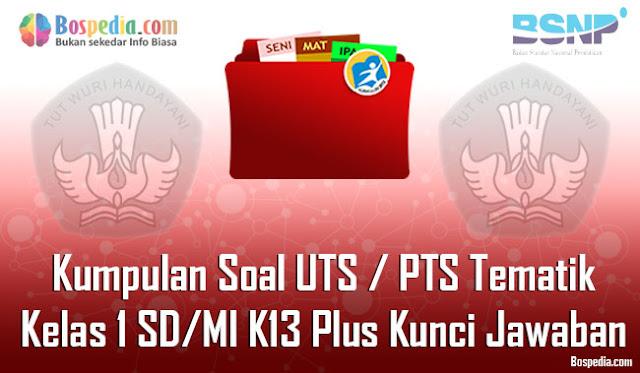 Kumpulan Soal UTS / PTS Tematik Kelas 2 SD/MI K13 Plus Kunci Jawaban Terbaru