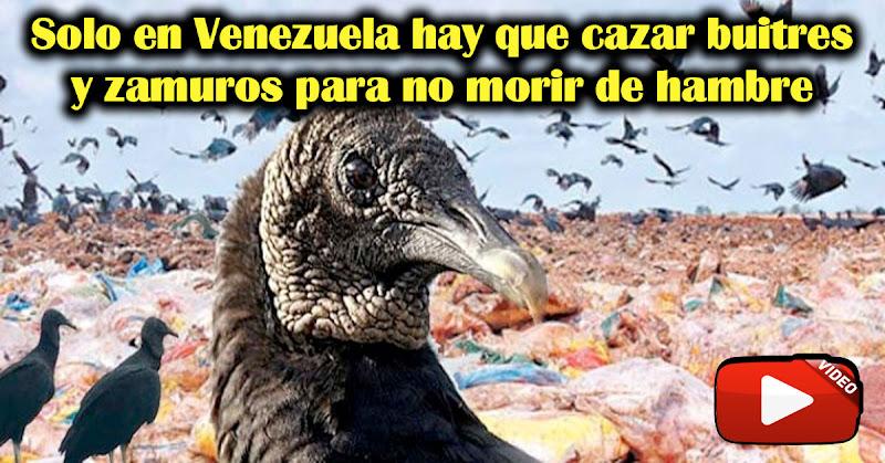 Solo en Venezuela hay que cazar zamuros para no morir de hambre
