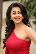 Nikki galarani latest sizzling pics-thumbnail-14