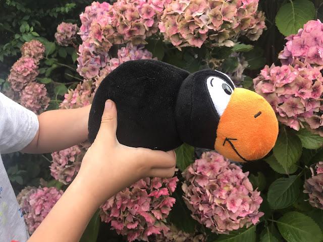 penguin soft toy in garden