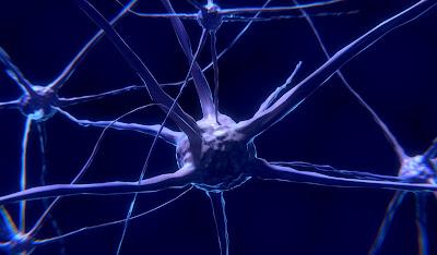 Traumatic brain injury concussion