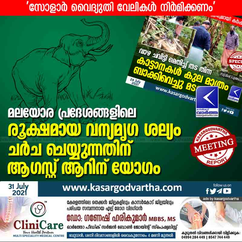 Kasaragod, Kerala, News, District collector, Report, Wild animal, Agriculture, Elephant, Meeting on August 6 to discuss wildlife disturbance.