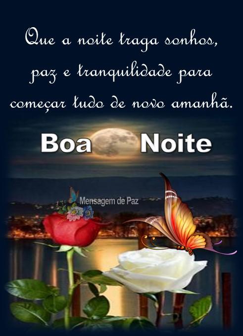 Que a noite traga sonhos,   paz e tranquilidade para   começar tudo de novo amanhã.  Boa Noite!