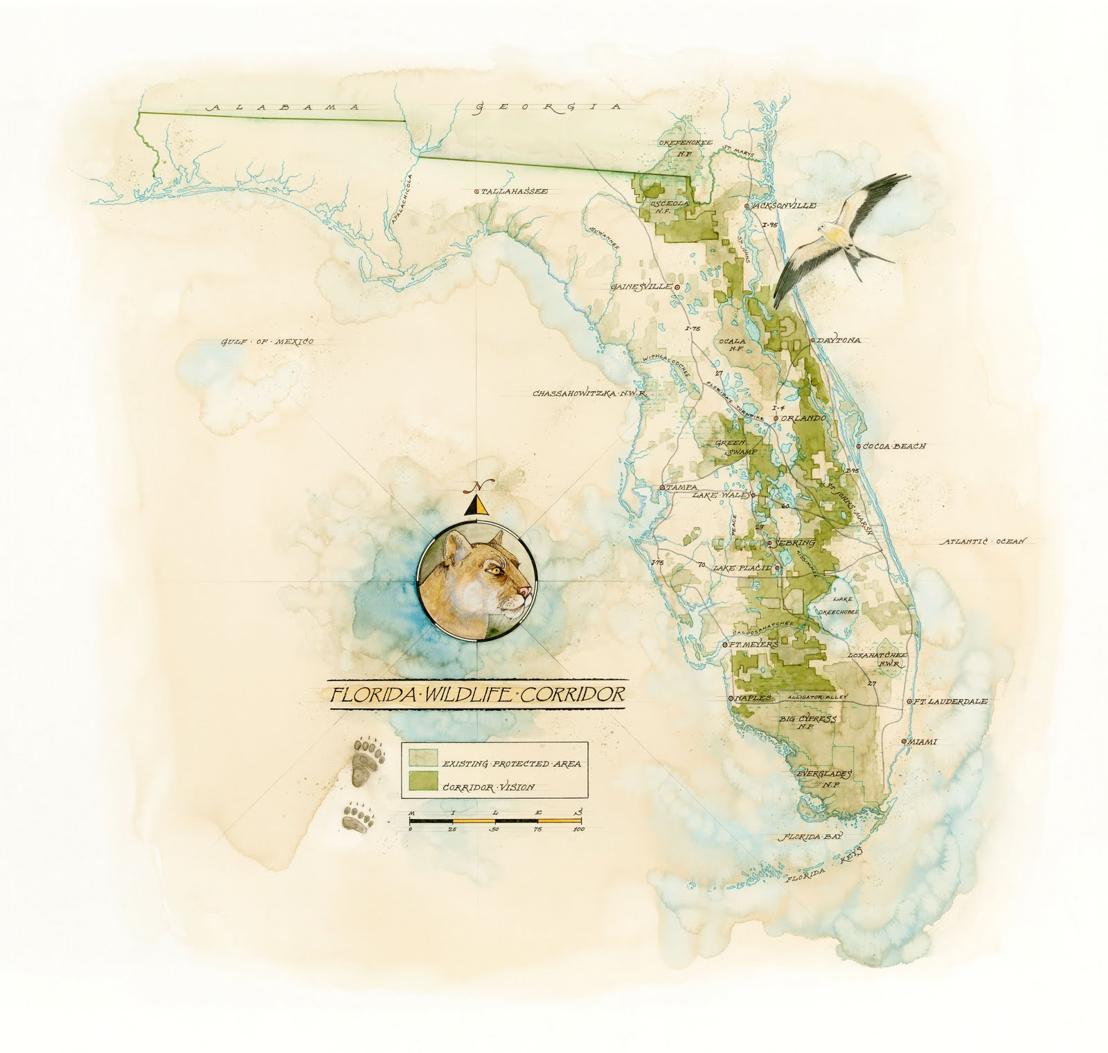 Florida Wildlife Corridor by Mike Reagan