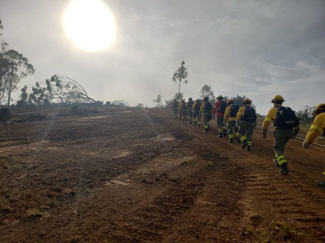 CORMA alerta sobre dramática alza en ocurrencia de incendios intencionales